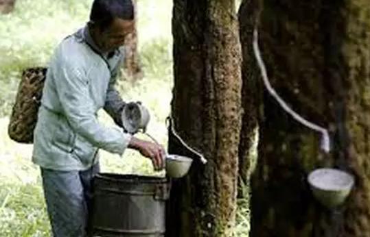 Industri Karet Fender Dermaga, Rubber Fender Pelabuhan Berkualitas Di Indonesia